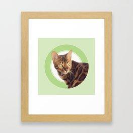 Boris the cat - Boris le chat Framed Art Print