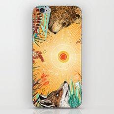 WHIRLWIND iPhone & iPod Skin