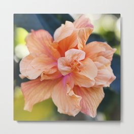 Jane Cowl Tropical Hibiscus Alternate View Metal Print