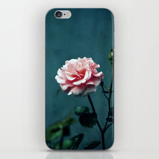 the rose iPhone & iPod Skin