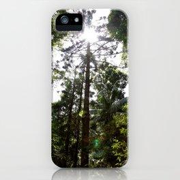 Hoop pine iPhone Case