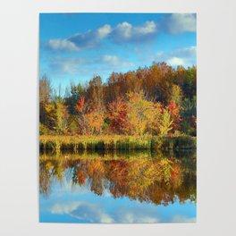 Vibrant Autumn Reflections Poster