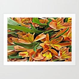 Peruvian Lilies - Orange Art Print