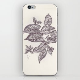 BALLEPN TRAVEL IN LAOS 1 iPhone Skin