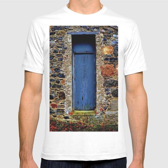 The Blue Door of Ballymascanlon T-shirt
