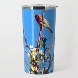 Red Canary - Good Morning - Jeronimo Rubio Photogaphy 2016 Travel Mug