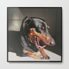 The Yawn Metal Print