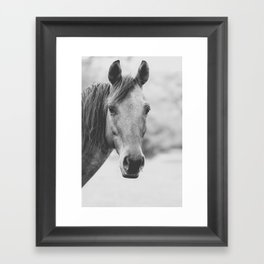 Wild Heart, No. 4 Framed Art Print