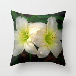 Glowing white daylily flowers - Hemerocallis Indy Seductress Throw Pillow