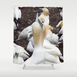 Northern gannet embrace Shower Curtain