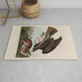 Common Buzzard Birds of America Audubon Illustration Bird Lovers Gift Rug