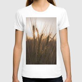 Wheat Holding the Sunset T-shirt