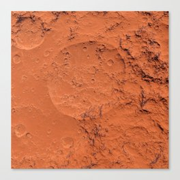 Mars surface Canvas Print