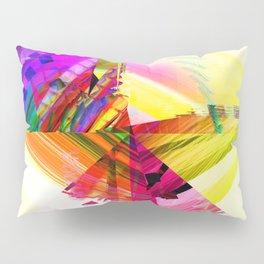 V2R31 Pillow Sham