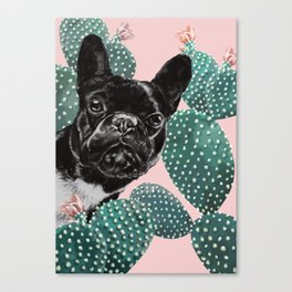 French Bulldog and Cactus Pink Canvas Print