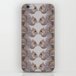 Squirrel Whispers iPhone Skin