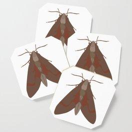 Moth Coaster