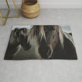 Close up straight look of horse Rug