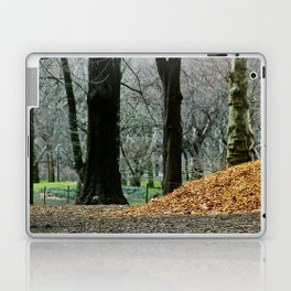 Central Park 80's Laptop & iPad Skin