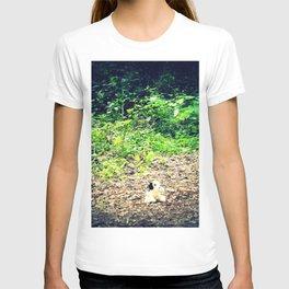 Lost Puppy Dog T-shirt