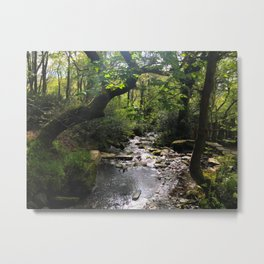 Where Fairies Live Metal Print