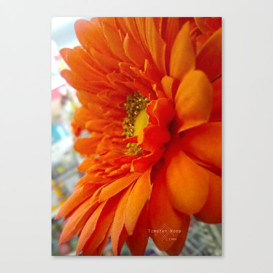 Crater of Pollen Canvas Print