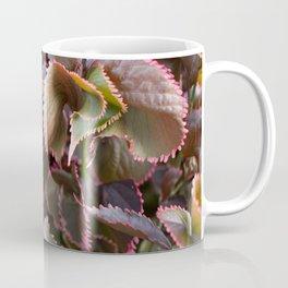 Color Tropical Coffee Mug