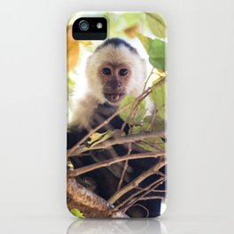 Lick the system iPhone Case