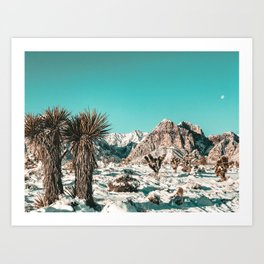 Vintage Lovers Cacti // Red Rock Canyon Mojave Nature Plants and Snow Desert in the Winter Art Print