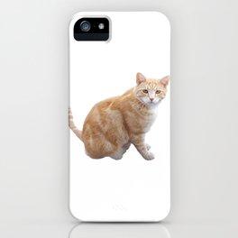 Neighbourhood cat iPhone Case