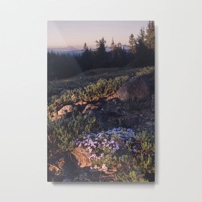 Wildflowers at Dawn - Nature Photography Metal Print
