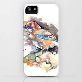 Lovely Birds №1 iPhone Case