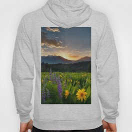 Wildflower Sunrise Hoody