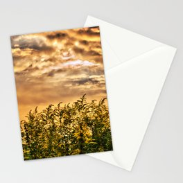 Approaching Stationery Cards