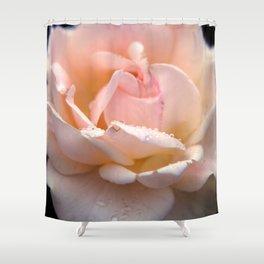 Morning Rose Shower Curtain