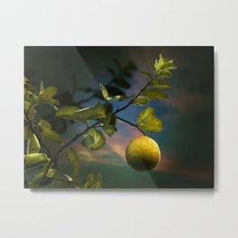 Lemon Tree at Night Metal Print