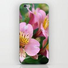 pink macro flowers iPhone & iPod Skin