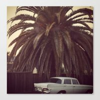 mercedes Canvas Prints featuring Palm Tree, Mercedes, California by ALLISON WATKINS
