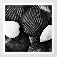 shells Art Prints featuring Shells by SilverSatellite
