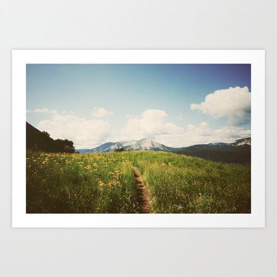Summer Wander Art Print