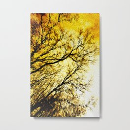 Morning Tree Tops Metal Print
