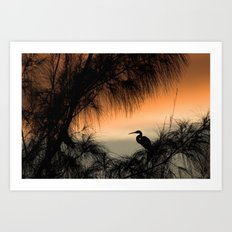 Home to Roost Art Print