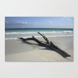 Carribean sea 13 Canvas Print