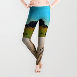 Traces of the tarmac worms Leggings