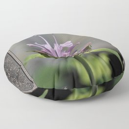 Bee Balm named Panorama Lavender Floor Pillow