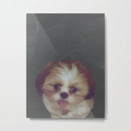 Little Pup Metal Print