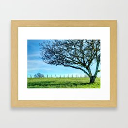 Rex Hill Tree Framed Art Print