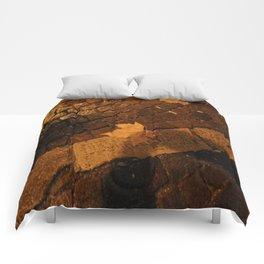 Between Order and Randomness Comforters