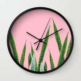 Snake plants with pink Wall Clock