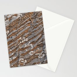 Cracked Stone Striations Stationery Cards